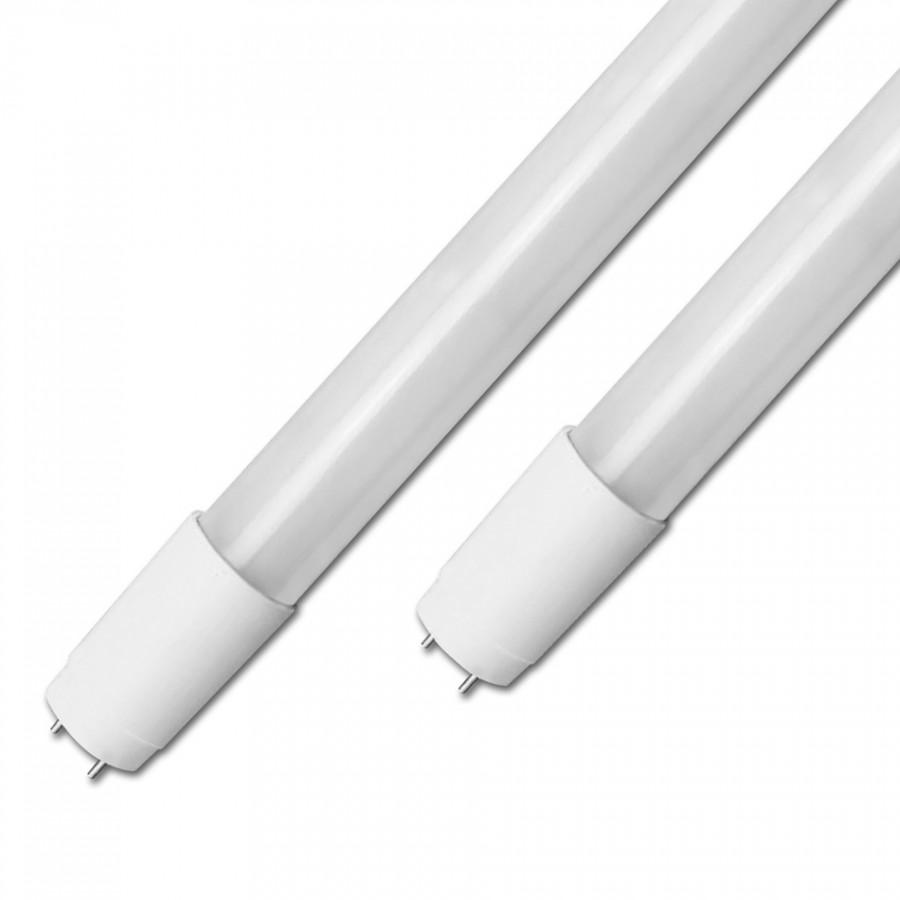 Lâmpada LED T8 Vidro  60cm | 6000K